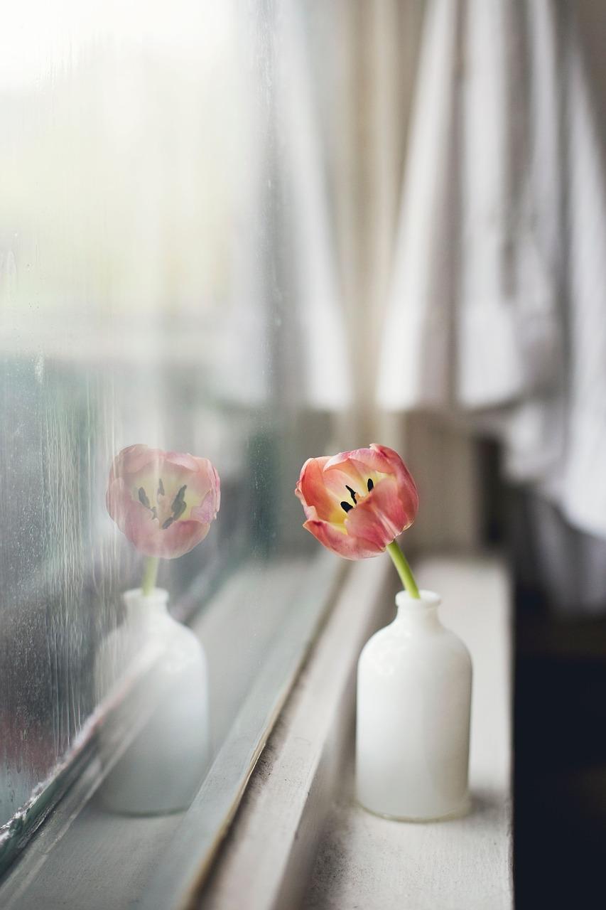 Vergilbte Fensterrahmen Wieder Weiß Bekommen kunststofffenster in weiß fenster bude